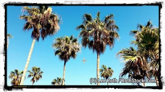 Southern California Vacation