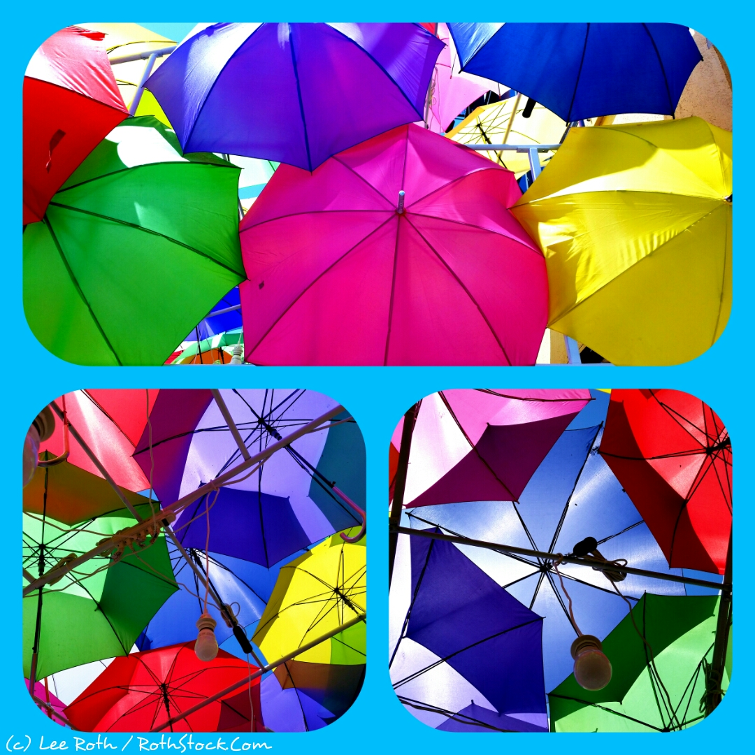 Canopy of Umbrellas