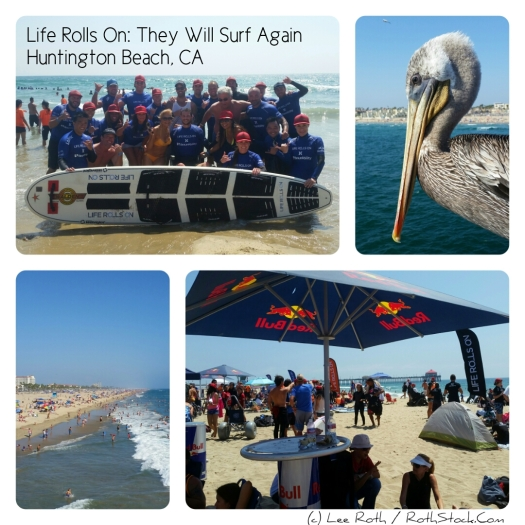 Life Rolls On: They Will Surf Again