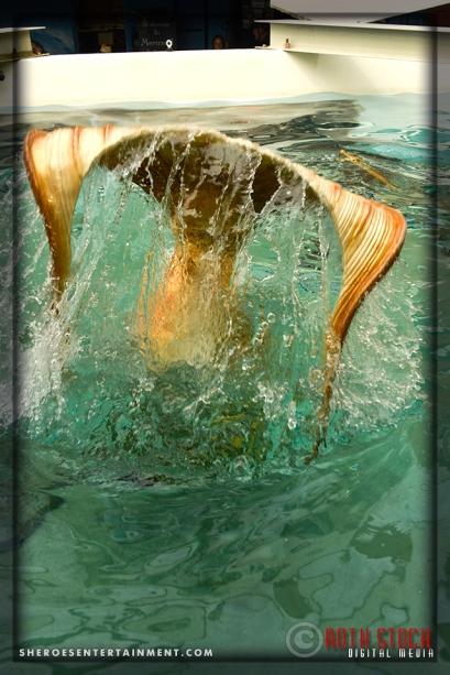 Catalina Mermaid