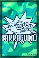 Team Barracudas