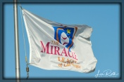 The Miracle League of Las Vegas Flag